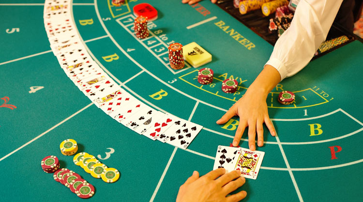 What Everybody Should Learn about Gambling Tips